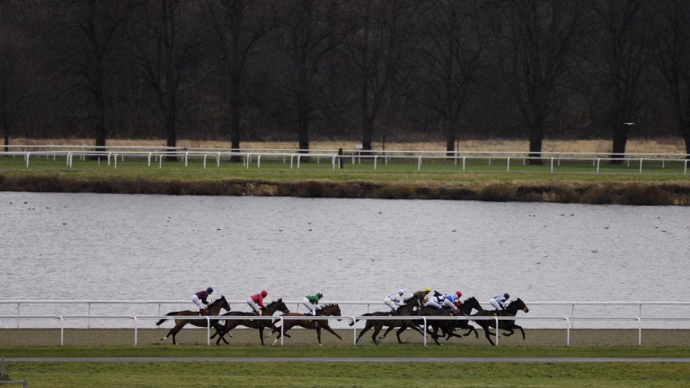 Runners pass by the lake at Kempton