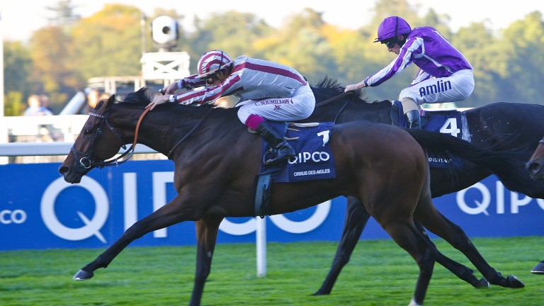 Cirrus Des Ailes - Christophe Soumillon wins from So You Think - Ryan MooreThe Qipco British Champions StakesAscot Champions Day 15/10/11Pic Mark Cranham
