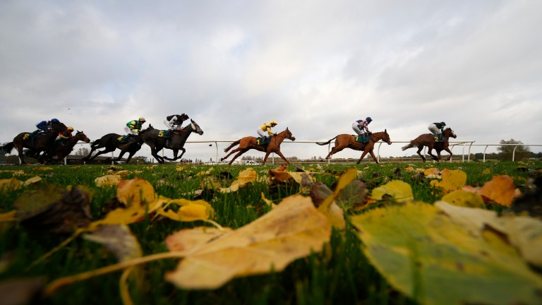 Fakenham's meeting has hit the rocks, with frozen ground and the prospect of snow