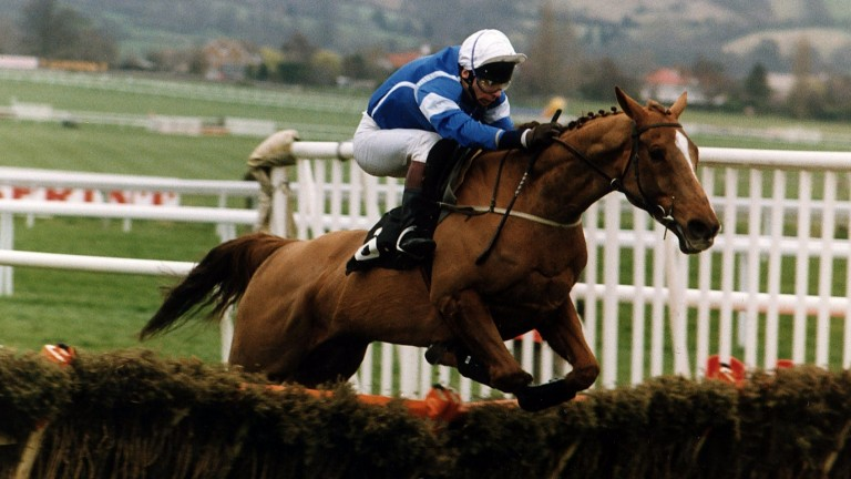 "Granville Again: a ""special"" moment for Peter Scudamore when the pair won the Champion Hurdle"