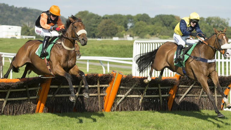 Tobefair (left) is a prolific winner and still improving