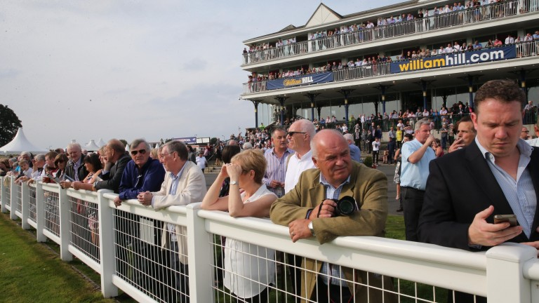 Ayr Racecourse - no weather problems anticipated