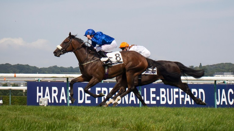 Ribchester: represents the older generation in the Sussex Stakes