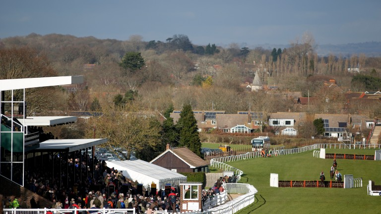 Plumpton stages its annual raceday in support of the Moorcroft Racehorse Welfare Centre