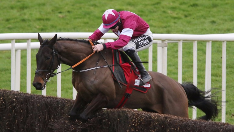 Ball D'Arc received just a 7lb penalty for winning Sunday's Dan Moore Memorial Handicap Chase at Fairyhouse