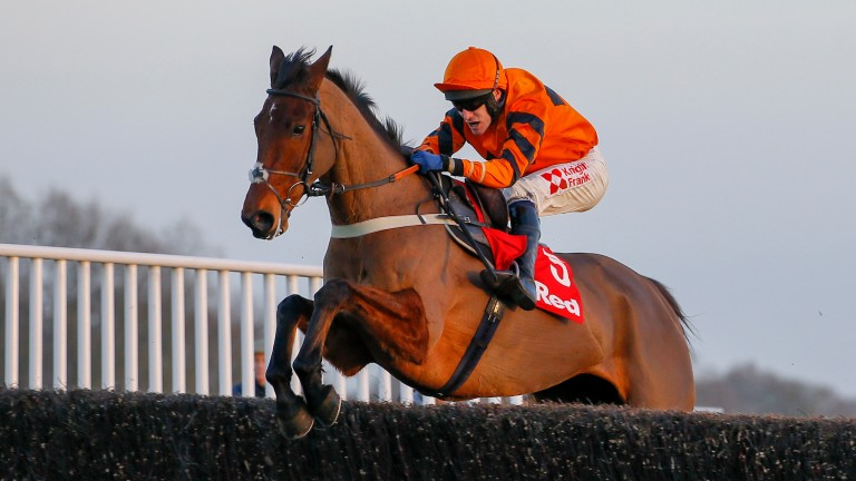 Thistlecrack: still the horse to beat in the Gold Cup