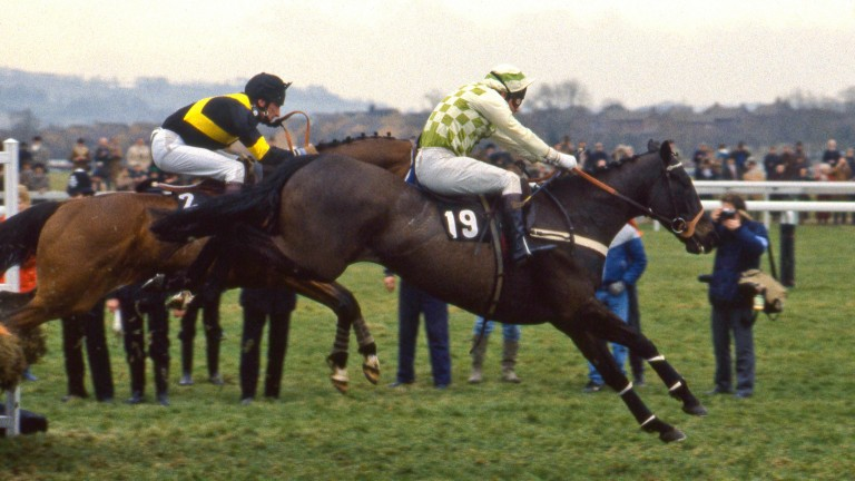 1987 Champion Hurdle winner See You Then claimed Sandown's Contenders Hurdle en route to Cheltenham Festival success