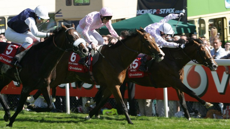 Dragon Dancer (noseband, left) goes down by a short head to Sir Percy (right) in the 2006 Derby