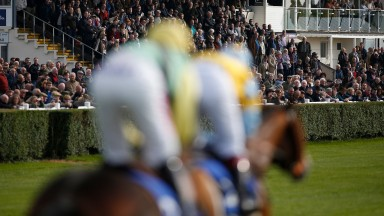 Wincanton: forced to abandon Thursday's card and could lose another