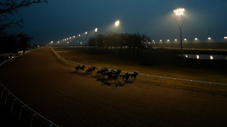 Racing took place under the lights at Chelmsford on Thursday