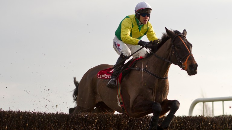 Sizing John and Robbie Power en route to landing the Ladbrokes Ireland Kinloch Brae Chase
