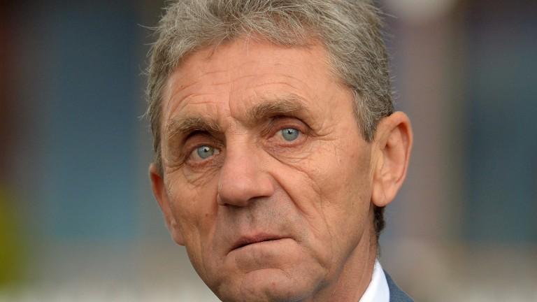 David Evans: trainer saddles Harry Beau at Newbury
