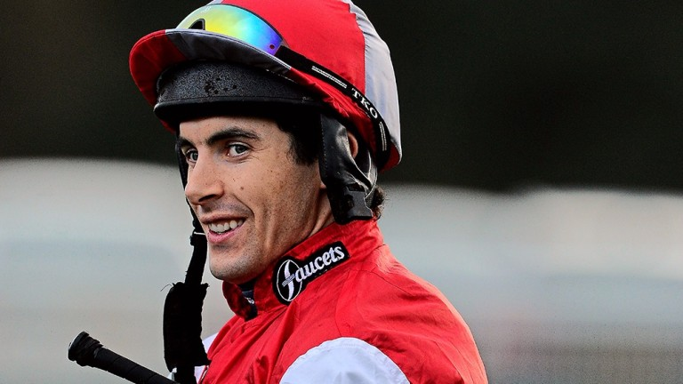 Aidan Coleman: jockey will do the steering on the well-regarded import