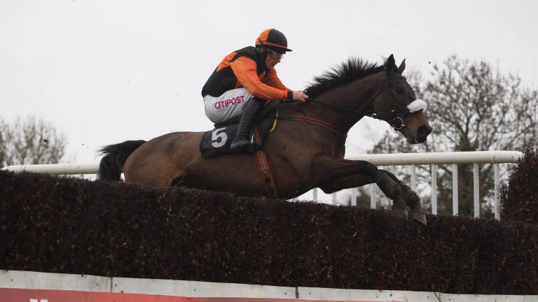 It's all guns blazing for Montys Meadow ahead of the Thyestes Chase next week according to his trainer Jimmy Mangan