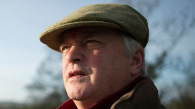 Colin Tizzard will be hoping Alary lives up to his reputation at Haydock on Saturday
