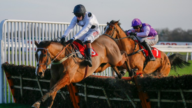 Elgin beats Mohaayed at Kempton- the pair clash again at Haydock