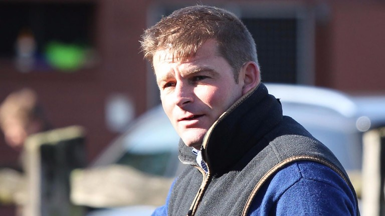 Tim Lane: has spent 13 years managing Oakgrove Stud in Chepstow