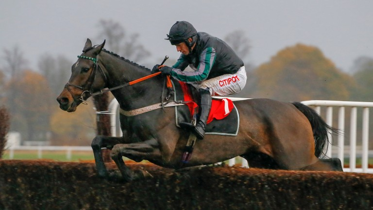 Altior: has created a fantastic impression over fences