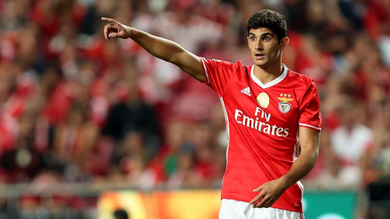 Benfica's Goncalo Guedes