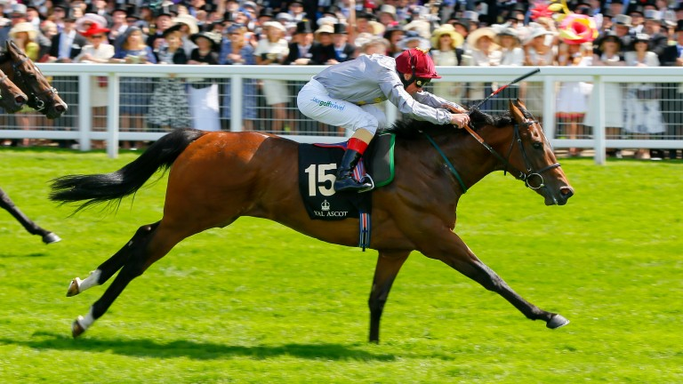The Wow Signal: wins the Group 2 Coventry Stakes at Royal Ascot