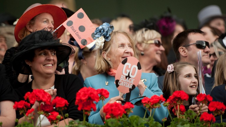 Black Caviar fans decked out in their horse's colours at Royal Ascot