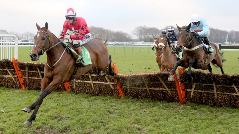 The New One completes a hat-trick of victories in last season's Haydock Champion Hurdle Trial