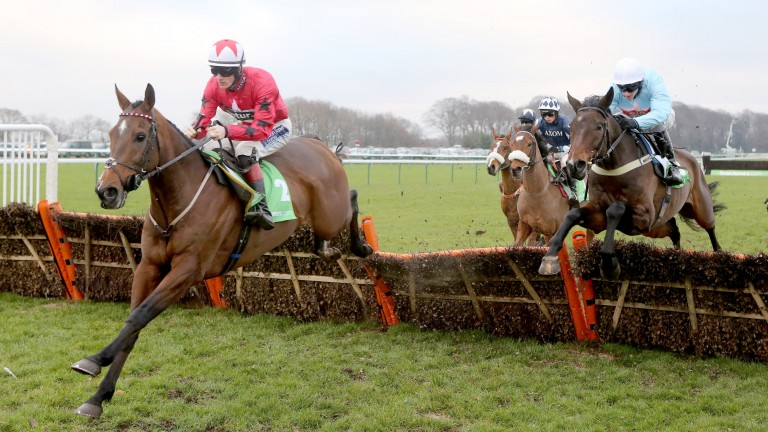 The New One: lands the Champion Hurdle Trial under Sam Twiston-Davies