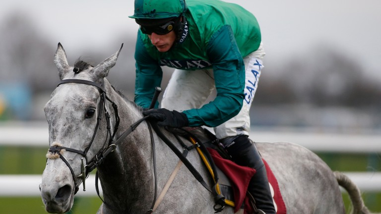 Bristol De Mai: a genuine Gold Cup contender after Peter Marsh romp