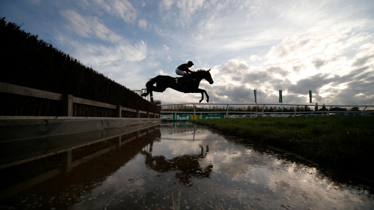 Bigbadjohn: The Sky Bet Chase is expected to suit him