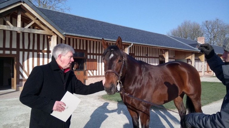 Haras de Bouquetot: John Quinn is reunited with his former stable flagbearer The Wow Signal