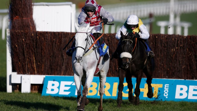 Smad Place and Many Clouds (right), first and second last year, could line up again