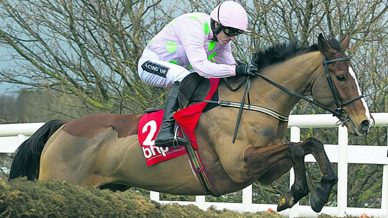Faugheen, winning last year's Irish Champion Hurdle, is set to return in Sunday's race
