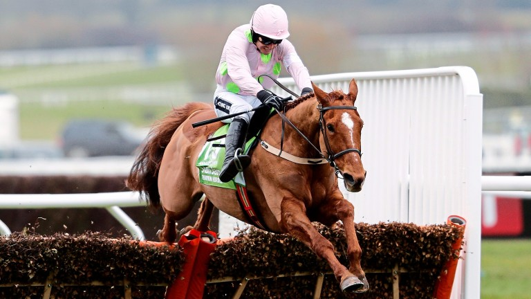 Annie Power, seen here winning last year's Stan James Champion Hurdle under Ruby Walsh