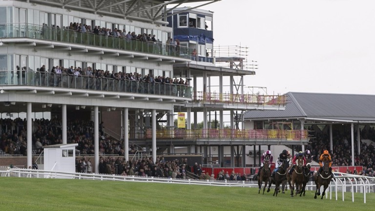Wetherby: race on Saturday