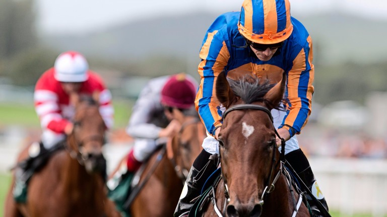 Churchill has been awarded a year-end official rating of 122 by European handicappers