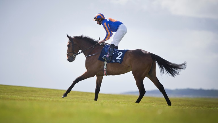 Found was rated the joint top-rated horse in Britain and Ireland on 124