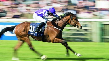 Minding: the assessors have used artistic licence in ranking her upsides Ribchester