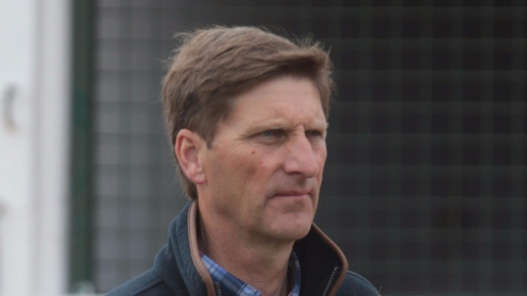 Chris Richardson: manager of Cheveley Park Stud is 61