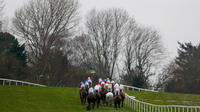 Sandown: ground is expected to be testing