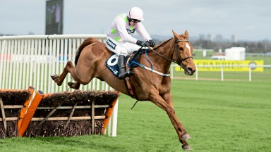 Annie Power: was a last-flight faller in 2015