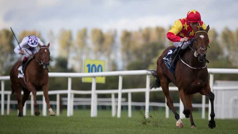 Jet Setting: wins the Group 3 Concorde Stakes at Tipperary