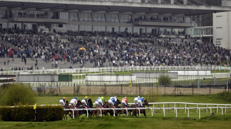 Sandown's ground must be up to the standard set by Kempton in order to justify the latter's closure, says Cheltenham chairman Robert Waley-Cohen