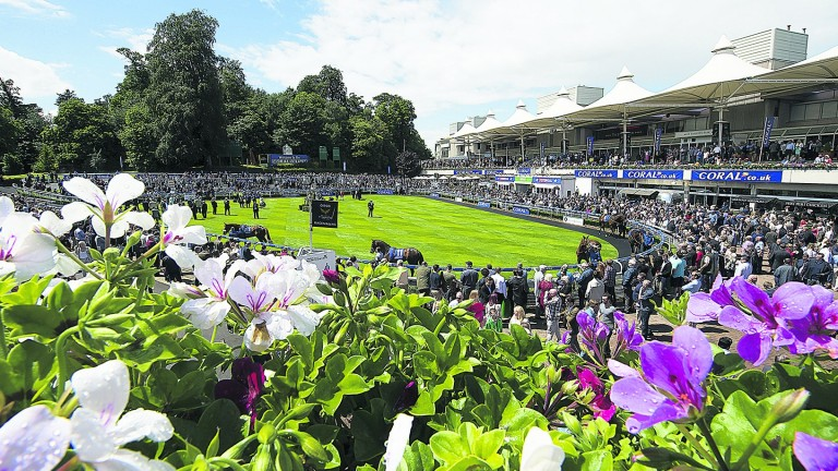 The potential redevelopment of Sandown represents part of 'a tremendous opportunity', according to the track's former chairman Andrew Wates