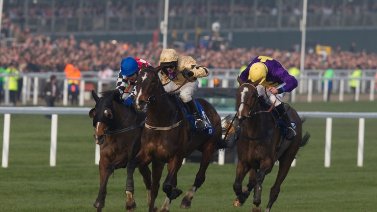 Lord Windermere and Davy Russell win the Betfred Gold Cup Cheltenham Festival Day 4 Photo: Patrick McCann 14.03.2014