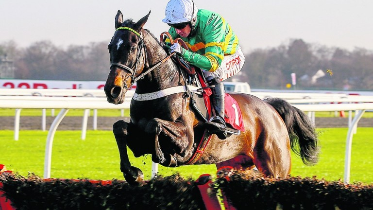 Charli Parcs made an excellent impression when winning at Kempton