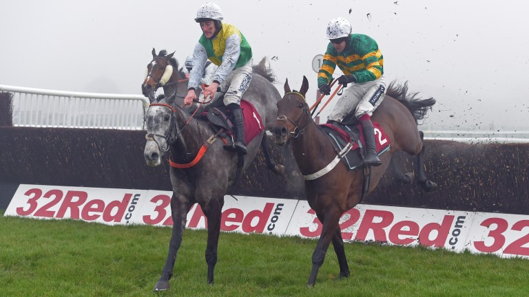 The grey Cloudy Dream was just denied by Buveur D'Air at Haydock last time