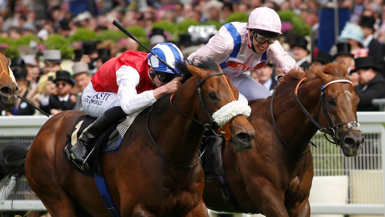 Profitable (nearside): sticks his neck out in front in the King's Stand Stakes at Royal Ascot