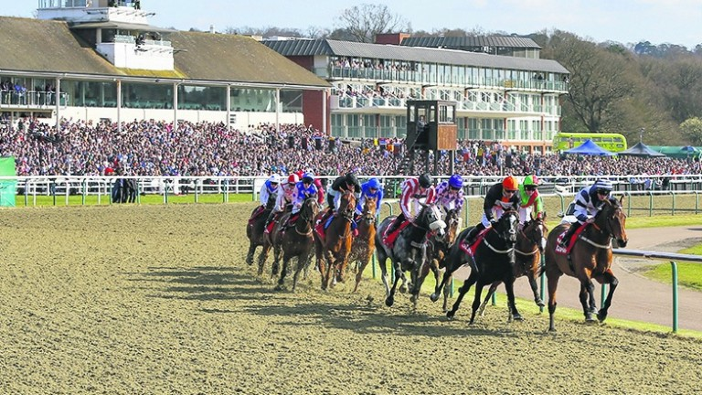 Lingfield: stages the fourth all-weather finals day on Friday