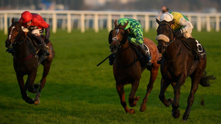 Many Clouds (right) announces himself on the big stage with his 2014 Hennessy triumph