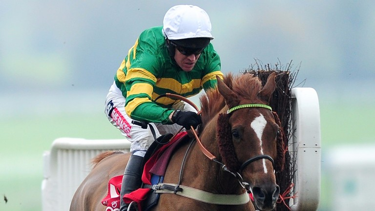 Uxizandre: on course for a return to the Cheltenham Festival after his second in the Clarence House Chase on Saturday